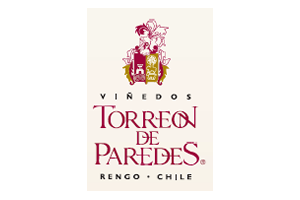 Torreon logo